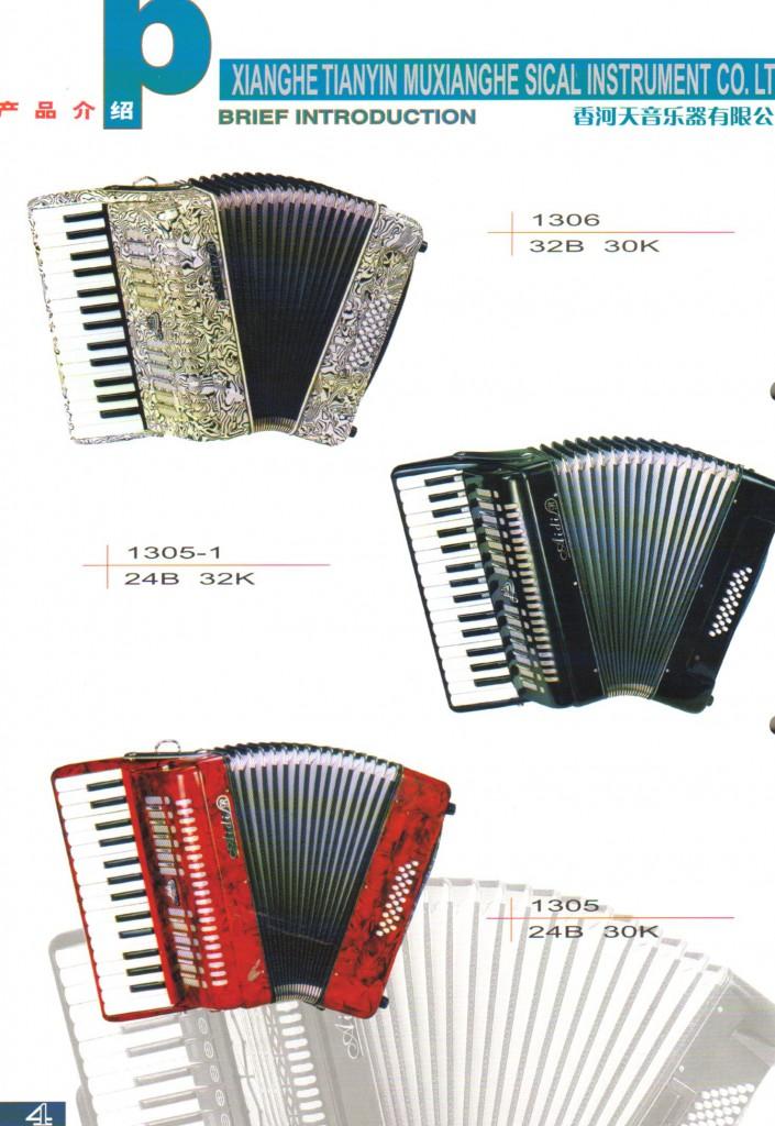 Aidi, аккордеон для детей