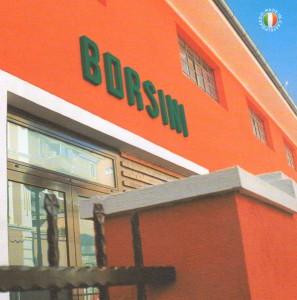 Borsini. Баяны и аккордеоны